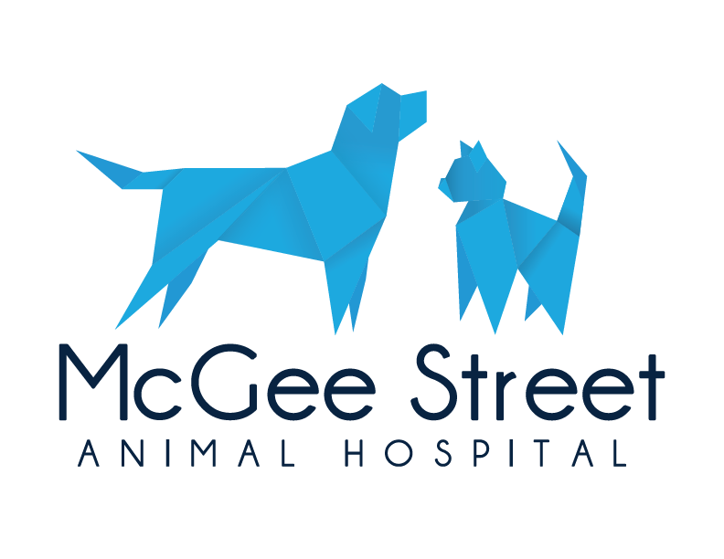 Vet Near Me 73069 Mcgee Street Animal Hospital Norman Ok